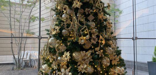 赤坂bizタワークリスマスツリー