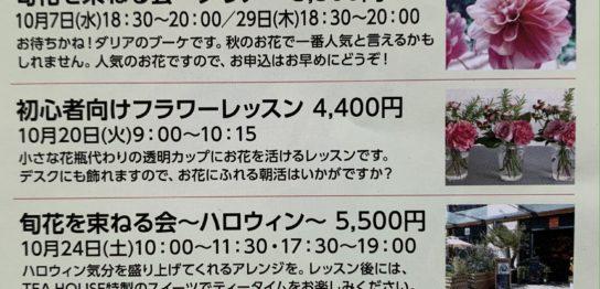 オトナのTHE★学!